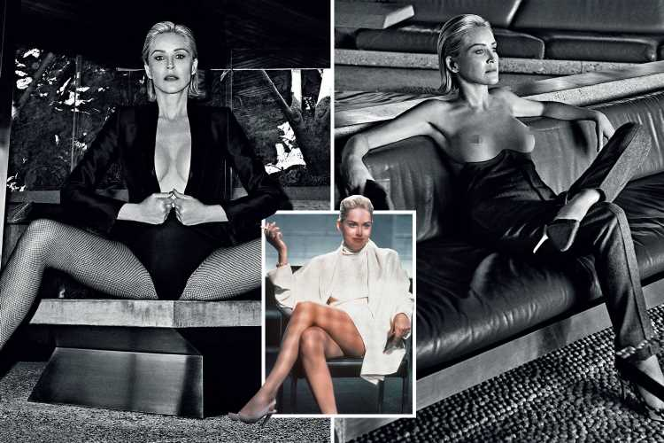 Sharon Stone, 61, poses topless as she recreates her